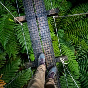 Choose your Rotorua Eco Adventure