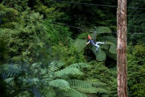 Map Image 4: Fly 45 metres above the ground on this zipline