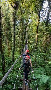 canopy-zipline-adventure-rotorua