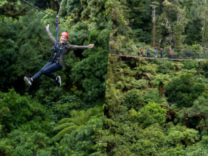 Happy-lady-on-zipline-group-of-friends-on-bridge-above-forest
