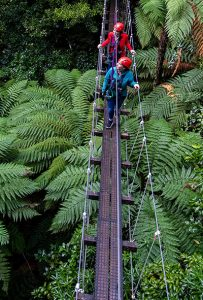 Two-girls-on-swingbridge-above-forest