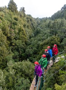 Canopy_Tours_Ultimate_A-65-min