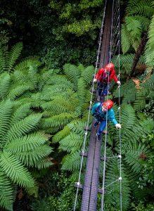 Rotorua-tourist-adventure-min (1)