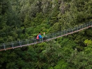 new-zealand-swing-bridge-min