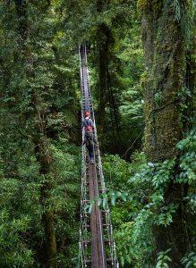 Couple-walking-across-swingbridge