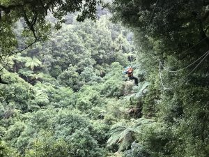 Man-ziplining-in-forest