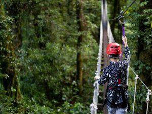 Child-walking-across-swingbridge-in-forest
