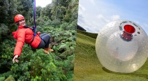 Woman-on-zipline-ogo-ball